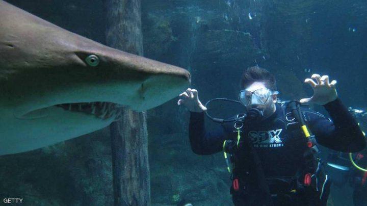 """بدلة """"ثورية"""" مضادة لسمكة القرش"""