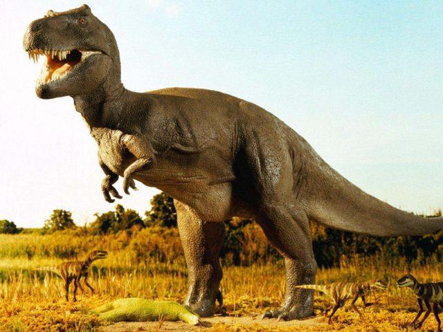من جديد.. اكتشاف بقايا ديناصور