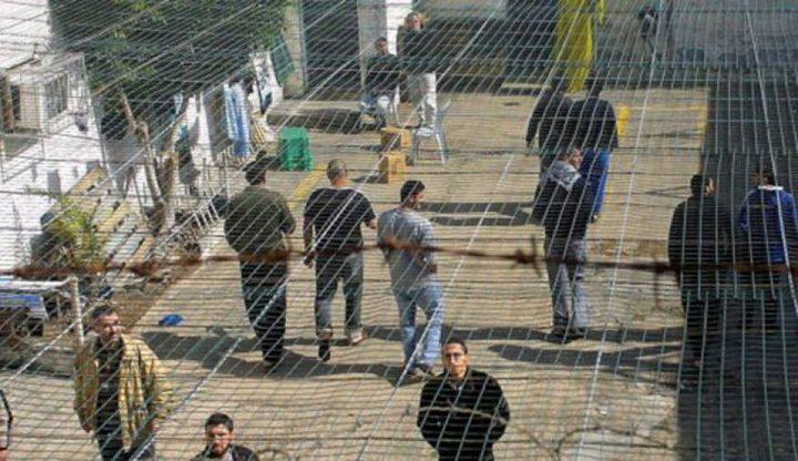 الأسير منتصر أبو غليون من مخيم جنين يدخل عامه الـ16 في الأسر