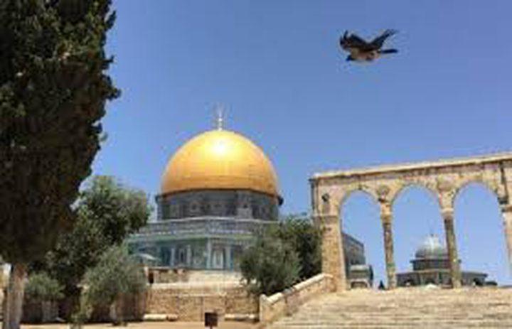 المجتمع الدولي مطالب بوقف حرب إسرائيل المفتوحة ضد القدس