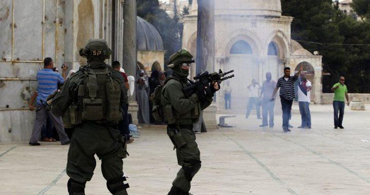 استنفار واسع لقوات الاحتلال في محيط الأقصى والبلدة القديمة