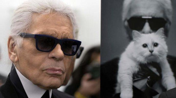 قطة مصمم الأزياء لاغرفيلد قد ترث أكثر من 195 مليون دولار