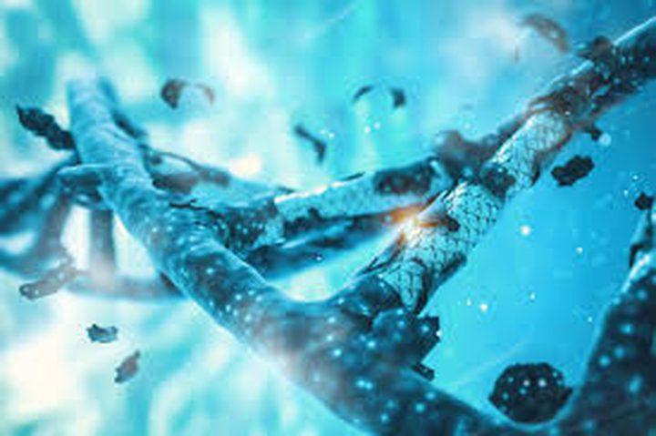 هل ينجح التعديل الجيني في علاج اضطراب دماغي نادر؟