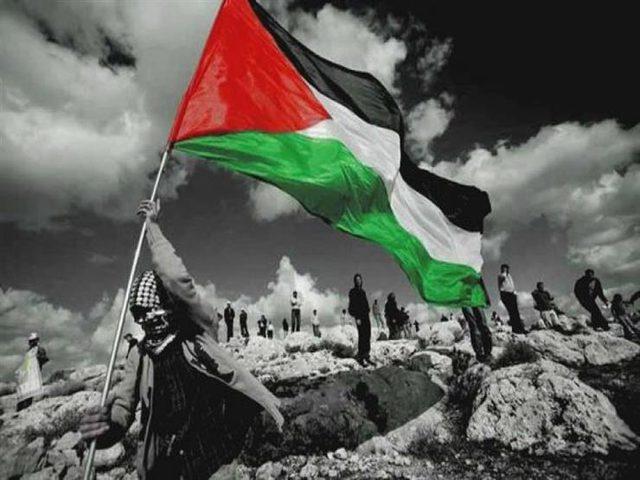 محلل: القضية الفلسطينية تعيش أصعب مراحلها من سياسية إلى انسانية