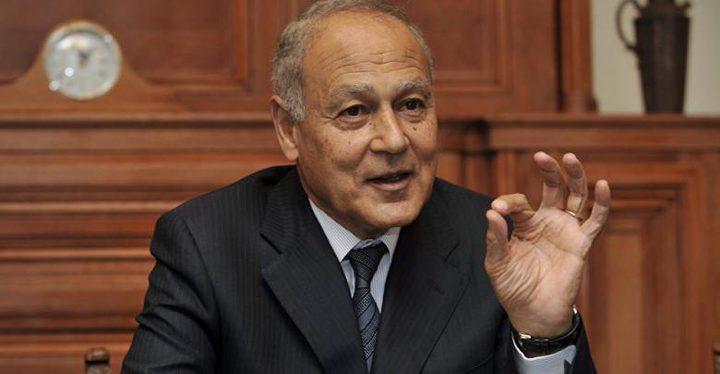 أبو الغيط: القضية الفلسطينية هي قضية سياسية بامتياز