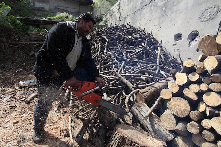 حطابان فلسطينيان يقطعان ويجهزان حطب الوقود للبيع وإنتاج الفحم في ورشة ، مدينة غزة ، في 26 فبراير 2019.