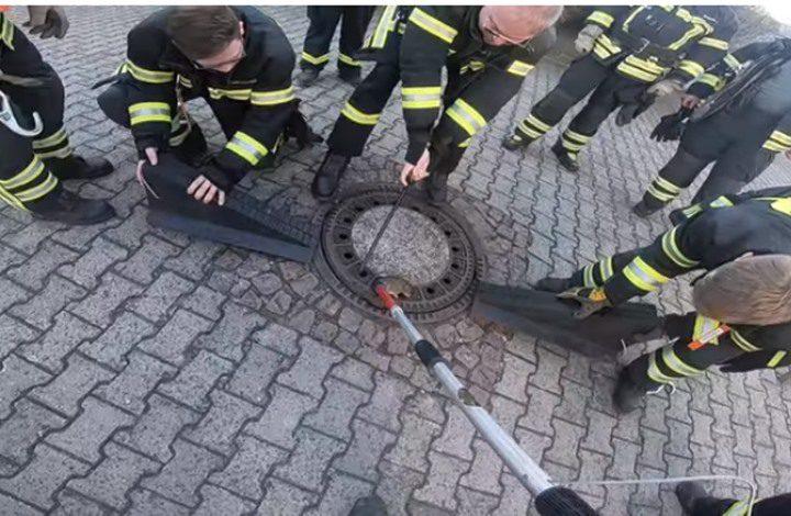 فريق كبير من رجال الإطفاء الألمان لإنقاذ.. جرذ