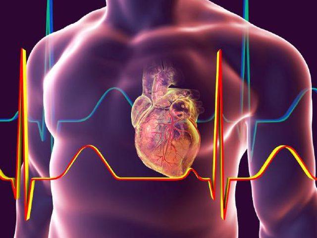 كل ما تريد معرفته عن ارتخاء صمام القلب