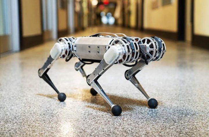"""""""الفهد""""..روبوت رباعي الأرجل يقوم بحركات صعبة"""