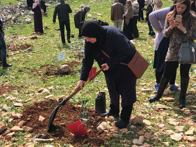 """""""شجرة لكل شهيد""""...أمهات الشهداء غرسن الألم ليزهر الأمل"""