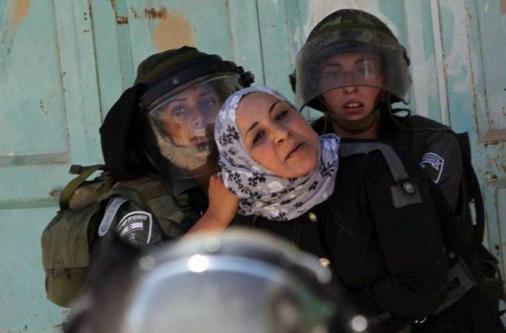 الاحتلال يعتقل فتاة من الخليل