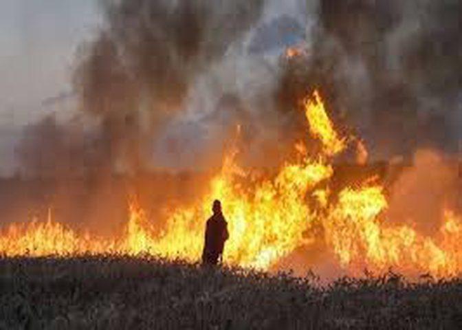 الاحتلال يزعم اندلاع حريق في مستوطنة اشكول بفعل البالونات الحارقة