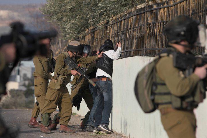 اعتقال 11 مواطنا في الضفة الغربية