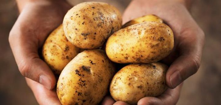 دراسة: البطاطا الطازجة تساعد على خفض مستوى السكر في الدم