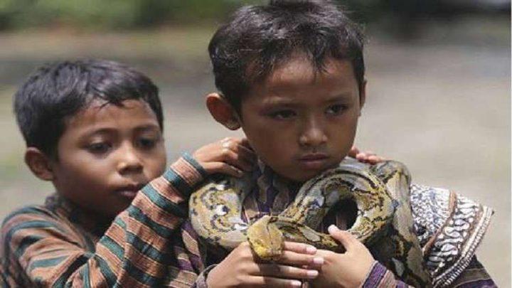 ثعبان يعض شفة طفل أغضبه! (فيديو)