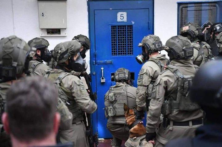 """وحدات القمع تقتحم قسم (4) في معتقل """"ريمون"""" وتجري تفتيشات قمعية"""