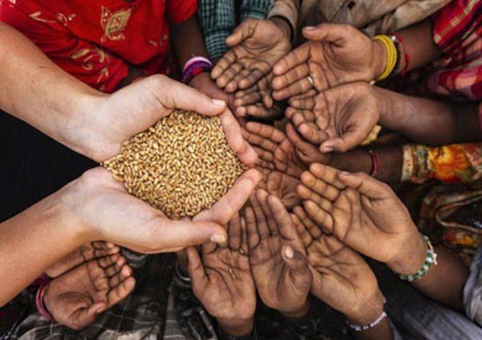 تقرير عالمي: 113 مليون إنسان يعانون من انعدام الأمن الغذائي