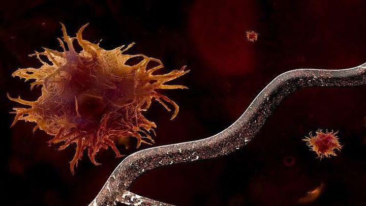 عالم فاز بنوبل: لا يمكن التغلب على السرطان!