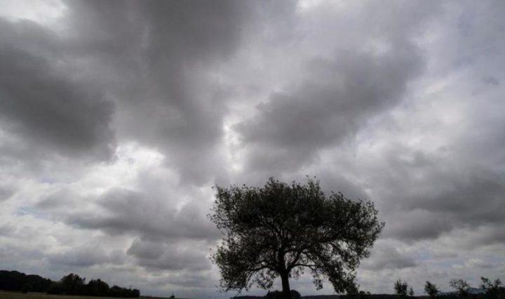 توقعات الحالة الجوية للأيام القادمة