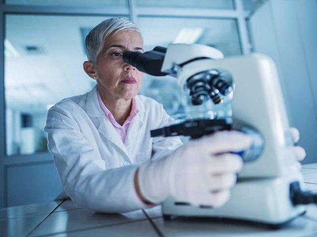 بكتيريا المعدة قد تحفز جهاز المناعة على مقاومة مرض السرطان