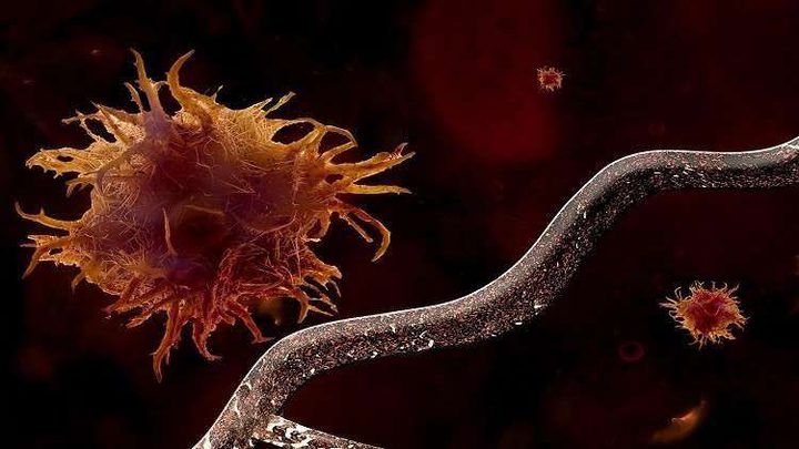 تطوير لقاح ثوري يعلم جهاز المناعة كيفية تدمير الأورام السرطانية