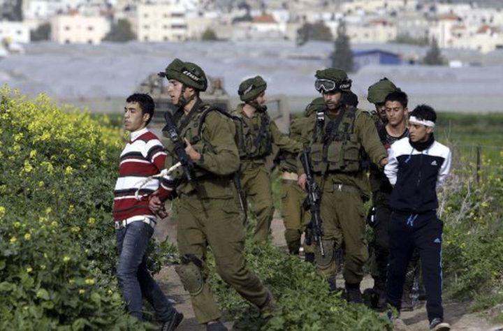 الاحتلال يعتقل ثلاثة أطفال شرق قلقيلية