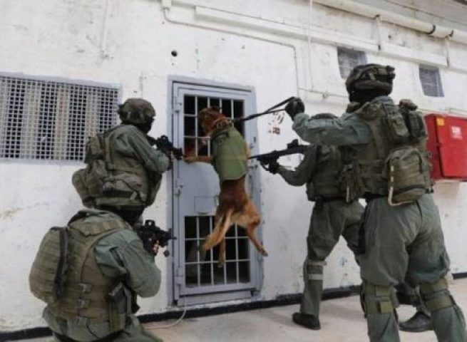 الحركة الاسيرة  تتعرض لاجراءات قمعية في سجون الاحتلال