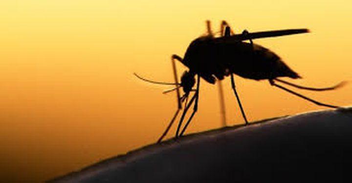 ما هو الرابط بين زمرة الدم و مرض الملاريا ؟