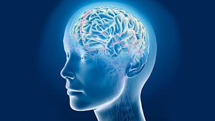 دراسة تفيد بإمكانية استعادة وظائف الدماغ بعد الموت