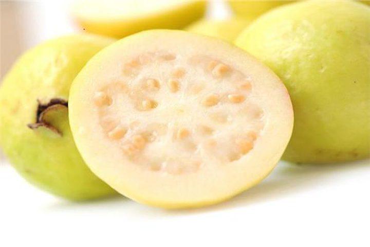 الجوافة .. فوائد وأضرار