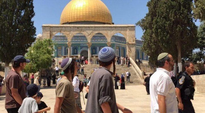 الأردن يدين الانتهاكات الاسرائيلية المتواصلة ضد الأقصى
