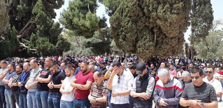 40 ألف مواطن يؤدون صلاة الجمعة بالمسجد الأقصى