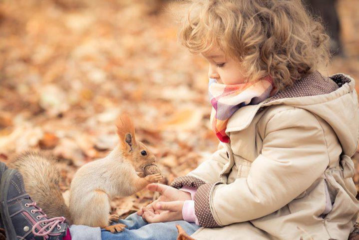 دراسة: التطعيمات لا تعالج الأطفال من حساسية الفول االسوداني