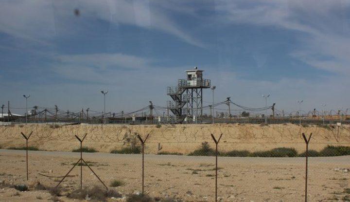 الصراصير تغزو أقسام الأسرى بسجن النقب الصحراوي