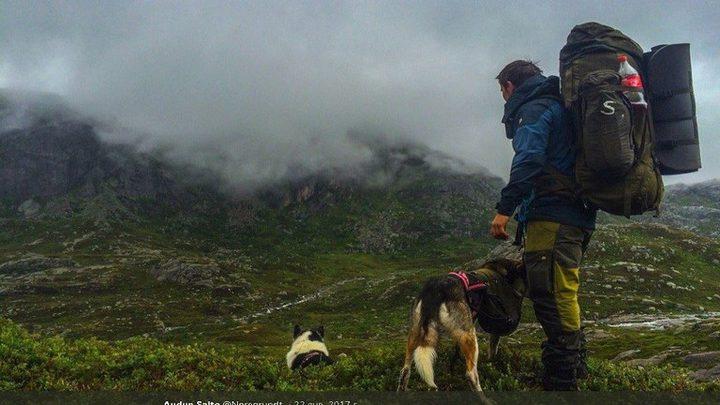 نرويجي هجر المدينة ليؤسس حياة جديدة مع 100 كلب! (فيديو)