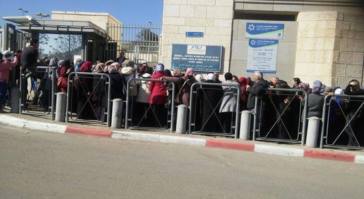 داخلية الاحتلال تطلب إلغاء الاستئنافات على طلبات لم الشمل