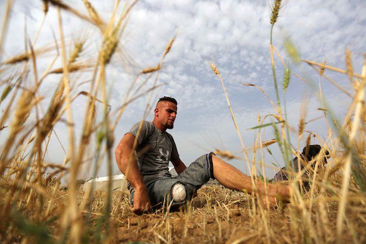 صهيب قديح 33 عامًا ، وأخته نزيهة قديح 38 عامًا ، فقدا ساقيهما بعد إطلاق النار عليهما من قبل قوات الاحتلال الإسرائيلي خلال  مسيرات العودة الأسبوعية، في حصاد محصول القمح في حقلهما ، في خان يونس جنوب قطاع غزة .