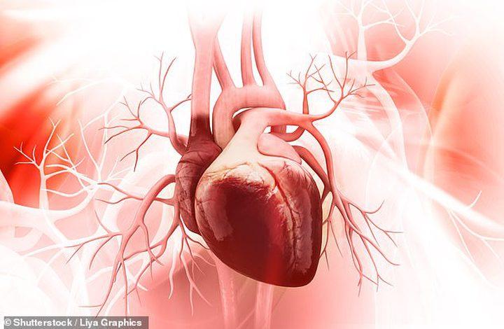 باحثون يكتشفون جين قد يجدد خلايا القلب بعد النوبات القلبية
