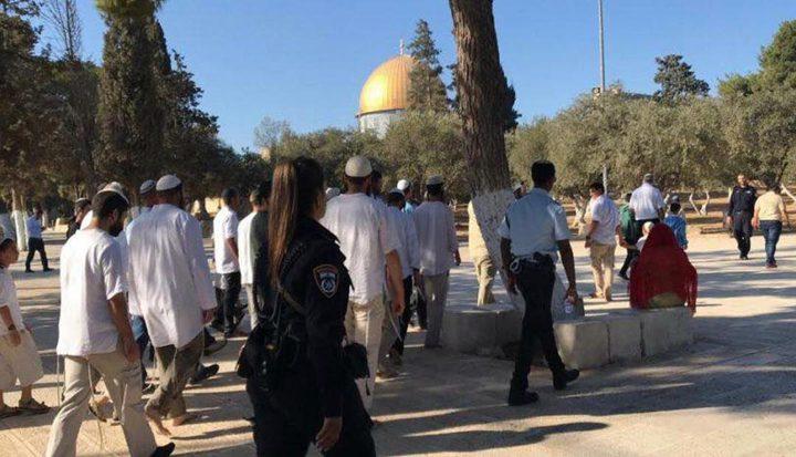 """جماعات """"الهيكل"""" تتحضر لاقتحام الأقصى بـ""""يوم القدس"""""""