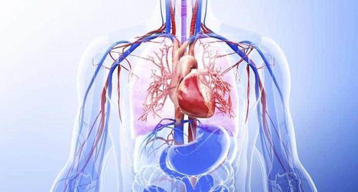 4 مراحل يمر بها جسم الإنسان خلال شهر الصيام.. تعرفوا عليها!