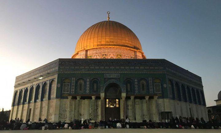 محافظ القدس وشخصيات مقدسية تلتقي وفدا هولنديا في المسجد الاقصى
