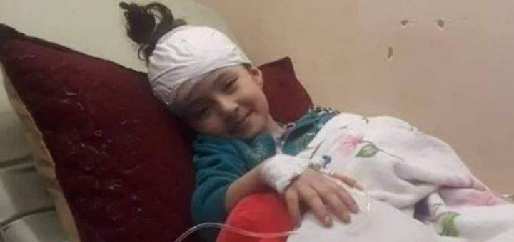 """الطفلة عائشة لولو تحرك """"جيش الهبد"""" لفضح الاحتلال"""