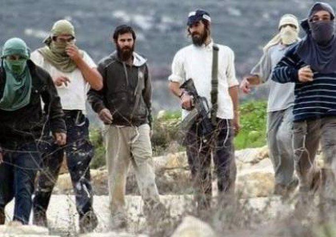 الخارجية تدين استهداف المستوطنين لمناطق جنوب غرب نابلس
