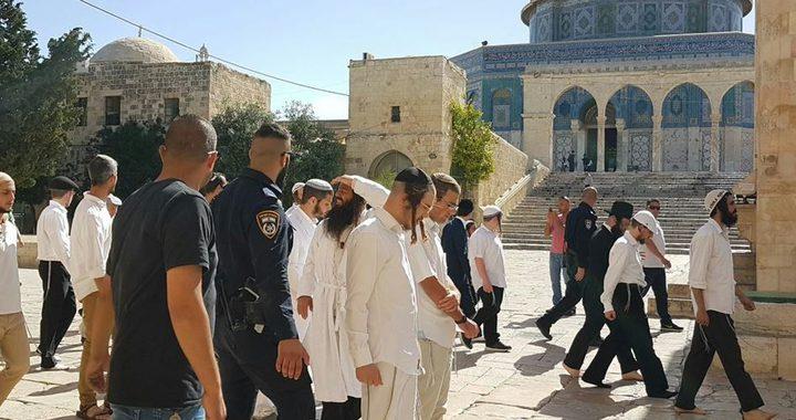 اقتحامات من قبل المستوطنين وجنود الاحتلال للمسجد الأقصى..