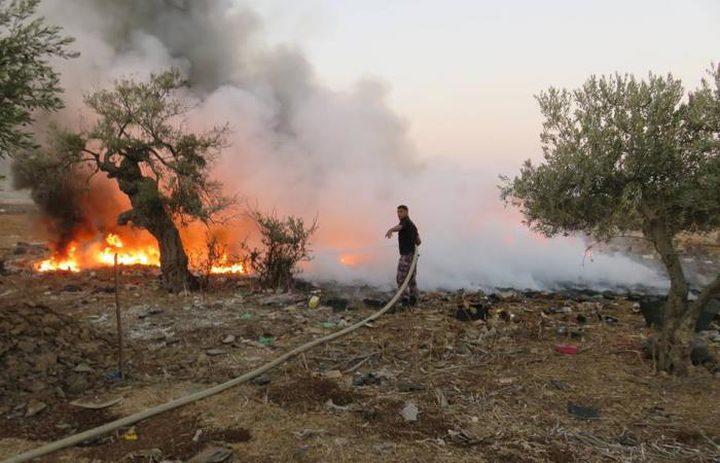 الدفاع المدني يخمد حريقا بأشجار زيتون في قرية الطيبة غرب جنين