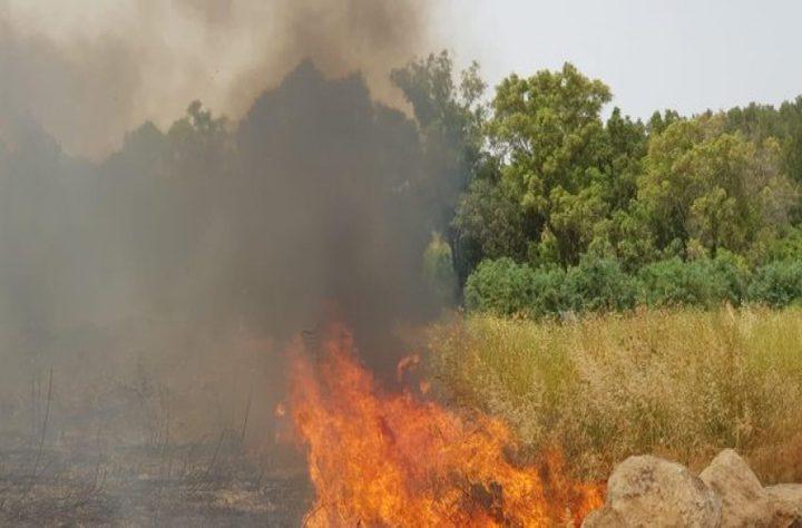 حرائق كبيرة بمستوطنتين جنوب الخليل والقدس جراء الحر