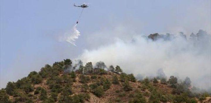 طائرات قبرصية تشارك في إخماد الحرائق في إسرائيل