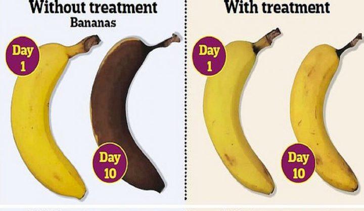 طلاء صالح للأكل يطيل عمر الفواكه والخضروات