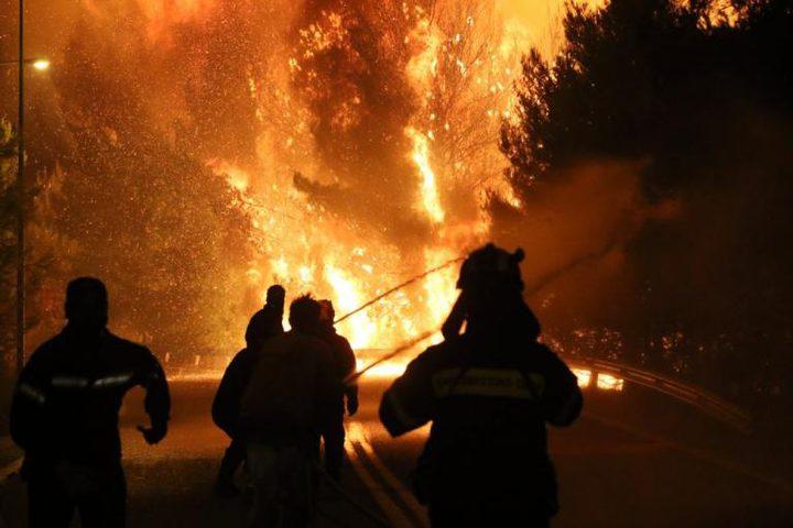 الحرائق تلتهم 50 شجرة زيتون في محافظة جنين