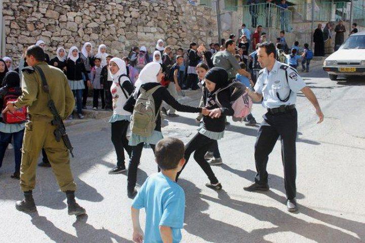 التربية تشيد بمواقف الاتحاد الأوروبي الرافضة لانتهاكات الاحتلال